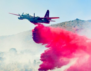 Bug_Creek_Fire_014_1_t990